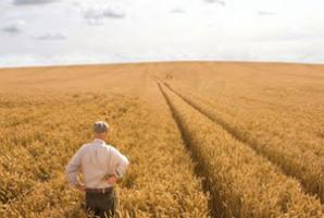 FORUM AGRICOLTURA - CREDITO