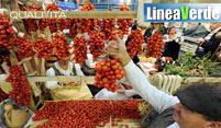 LINEA VERDE: ECCELLENZE AGROALIMENTARI E PRESIDI TERRITORIALI
