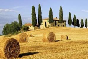 RAI 1 LINEA VERDE - IL MODELLO AGRICOLO TOSCANO