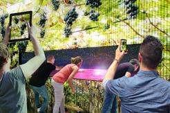PRESENTAZIONE DEL PADIGLIONE DEL VINO EXPO 2015