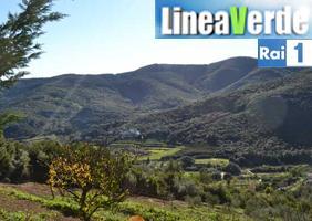 QUALIVITA A LINEA VERDE PER PARLARE DELL'AGRICOLTURA SLOW
