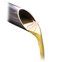 Italia: registrato l'Olio extravergine di oliva Seggiano DOP